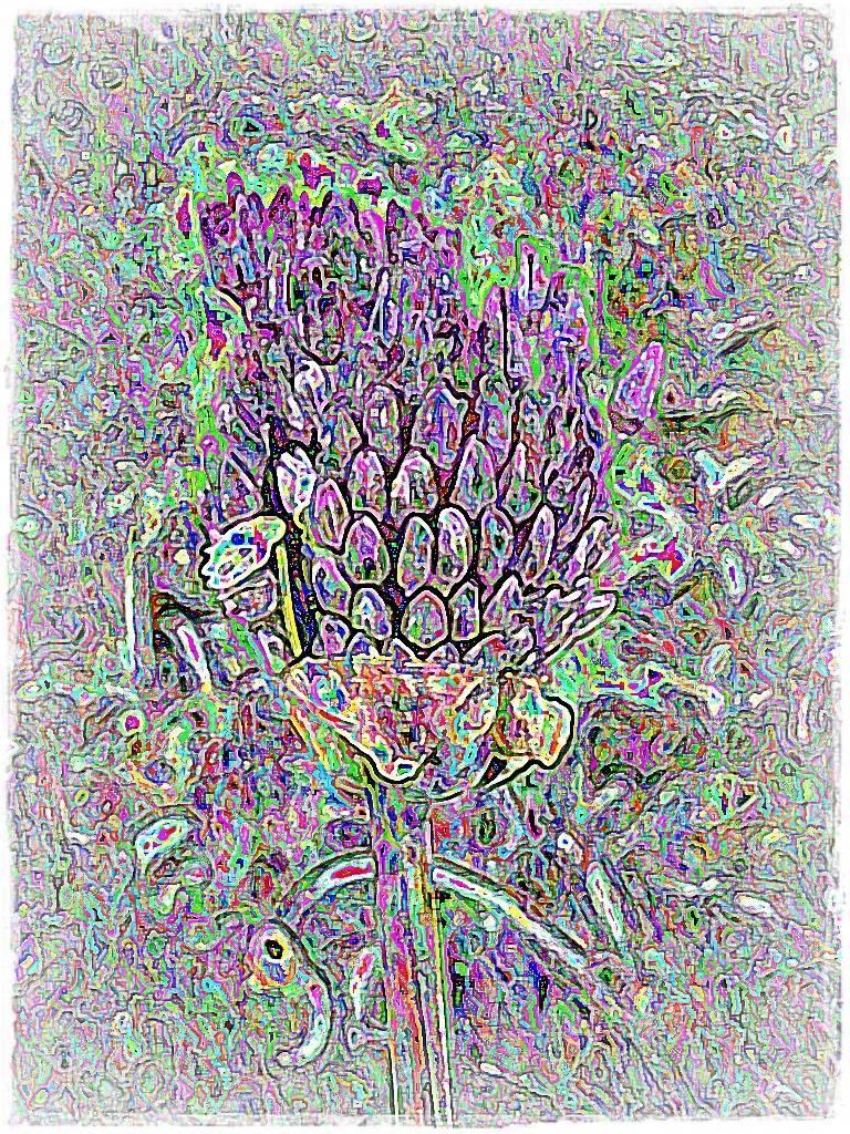 AtropsApril09 028 Grafik a Aquarell Grafik dunkel 3
