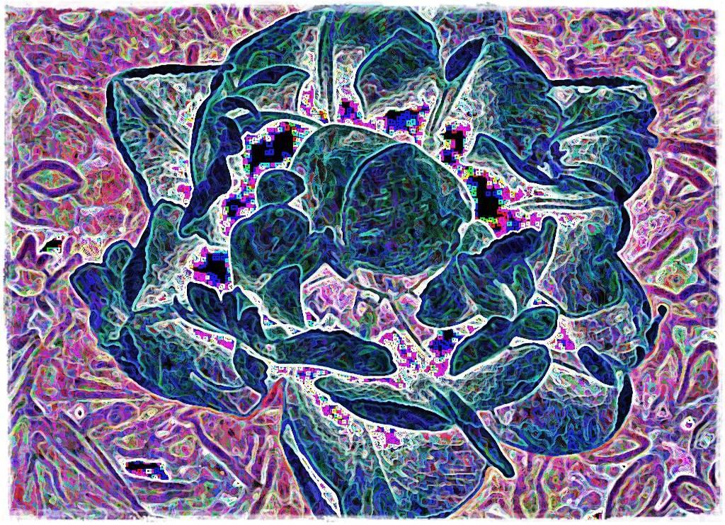 AtropsApril09 035 a Grafik dunkel Aquarell dunkel Grafik