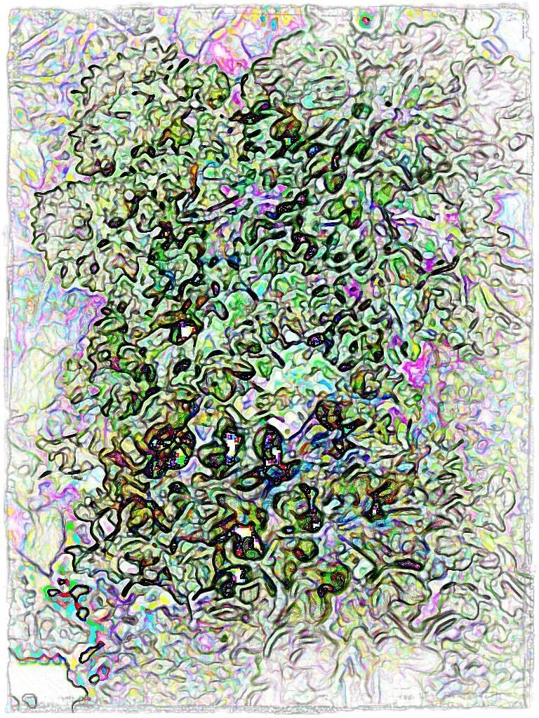 AtropsApril09 041 grafik Aquarell Grafik 2