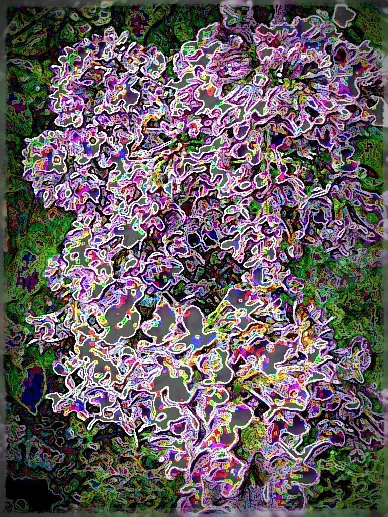 AtropsApril09 041 grafik Aquarell Grafik dunkel Grafik a