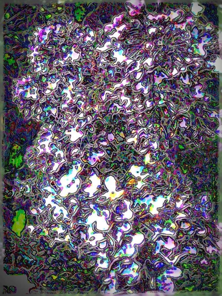 AtropsApril09 041 grafik Aquarell Grafik dunkel Grafik