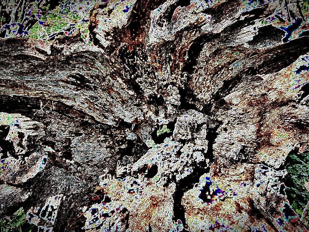 Halle MärzApril 2011 031 a Aquarell Grafik dunkel b
