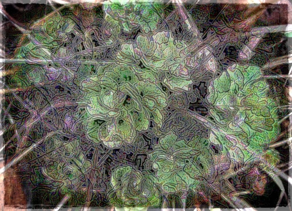 Köln 2009 006 - Kopie Aquarell Grafik b dunkel b 3 Aquarell 3 dunkel 2