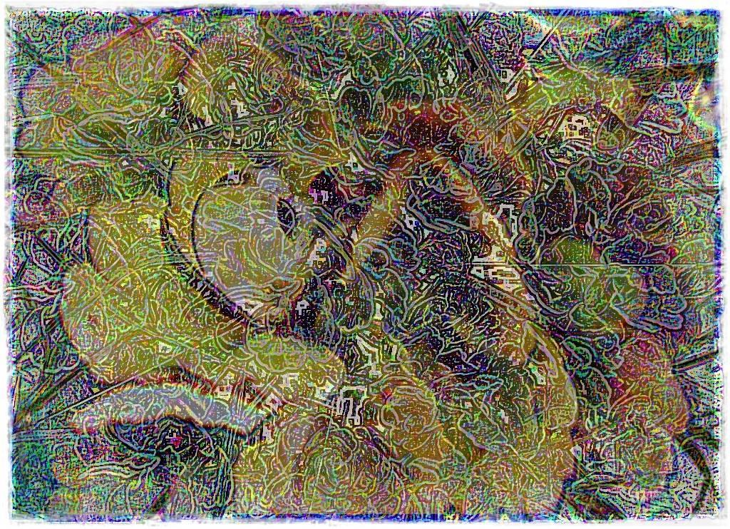 Köln 2009 006 - Kopie Aquarell Grafik b dunkel b 3 Aquarell 3 dunkel 3 Grafik b