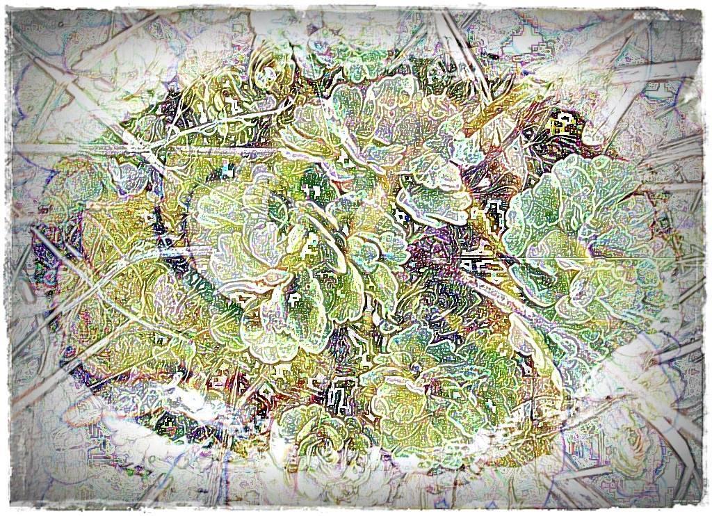 Köln 2009 006 - Kopie Aquarell Grafik b dunkel b 3 Aquarell 3 dunkel 5