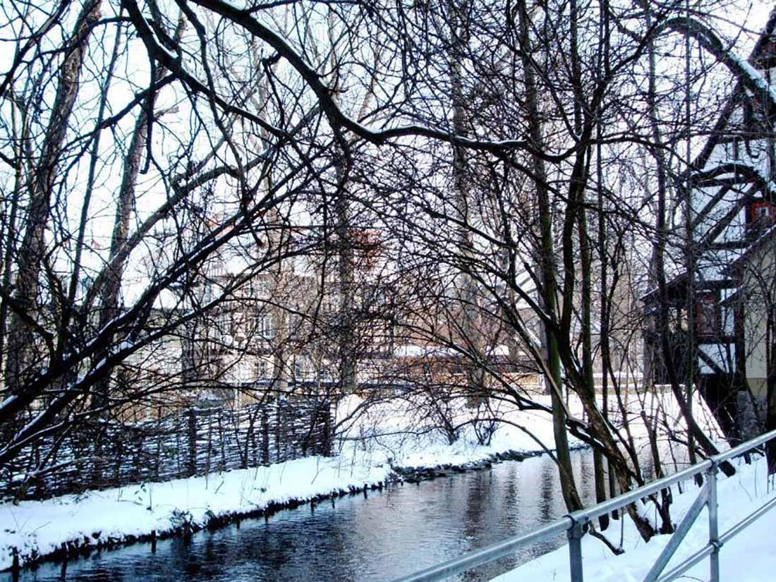 Kräbrü Winter DSCF1998