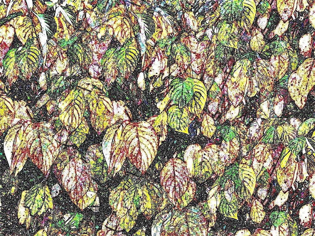 Okt08 032 Aquarell 2 Grafik