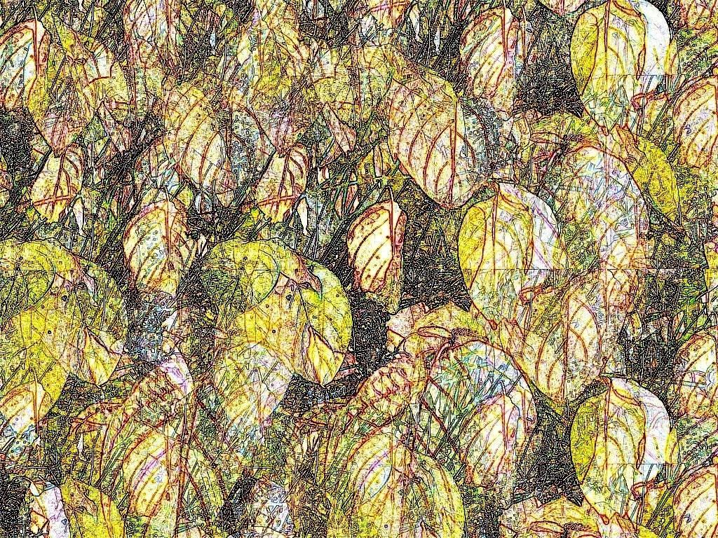 Okt08 039 Aquarell 2 Grafik