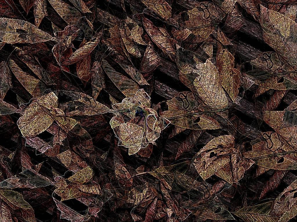 Okt08 058 Aquarell b dunkel