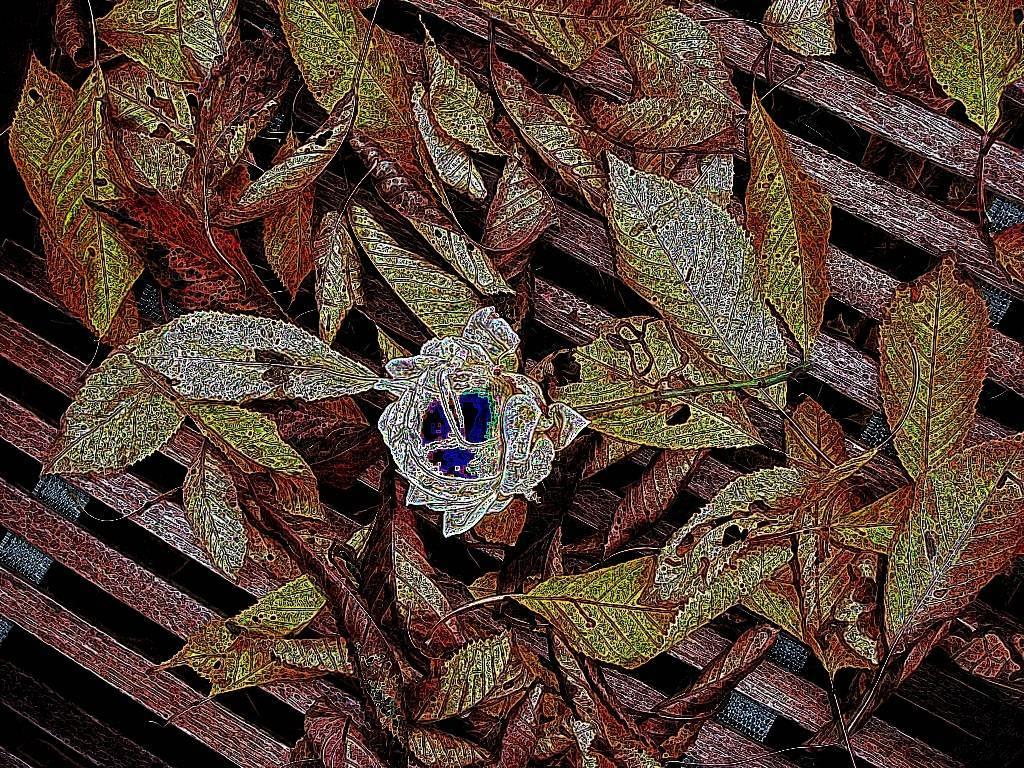 Okt08 058 Aquarell dunkel Grafik dunkel
