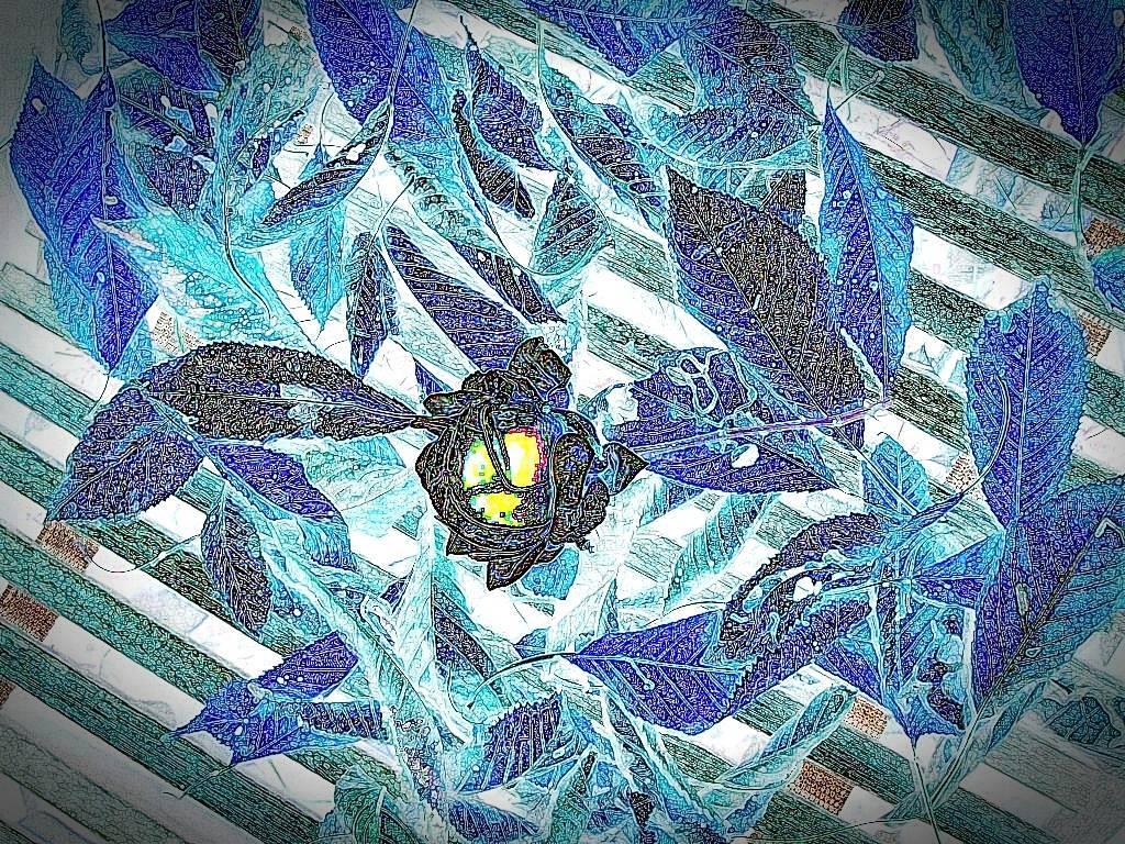 Okt08 058 Aquarell dunkel Grafik