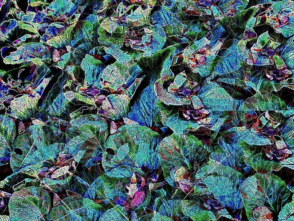 VernKulissen07 044 Aquarell 3 Grafik dunkel