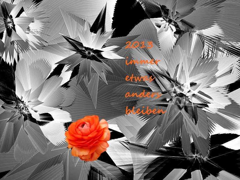 2013 Rose im Eis 2