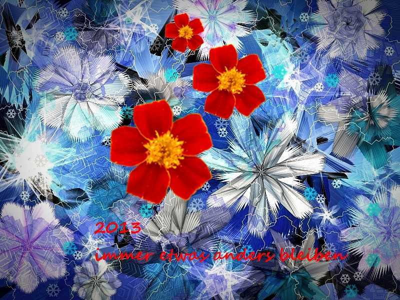 2013 Blume in Eisblumen
