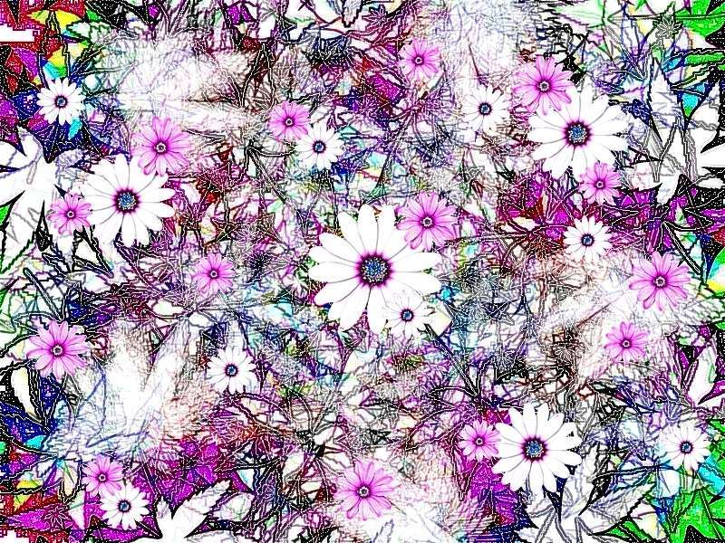 Frühling 1 a Grafik Blüten pink Grafik